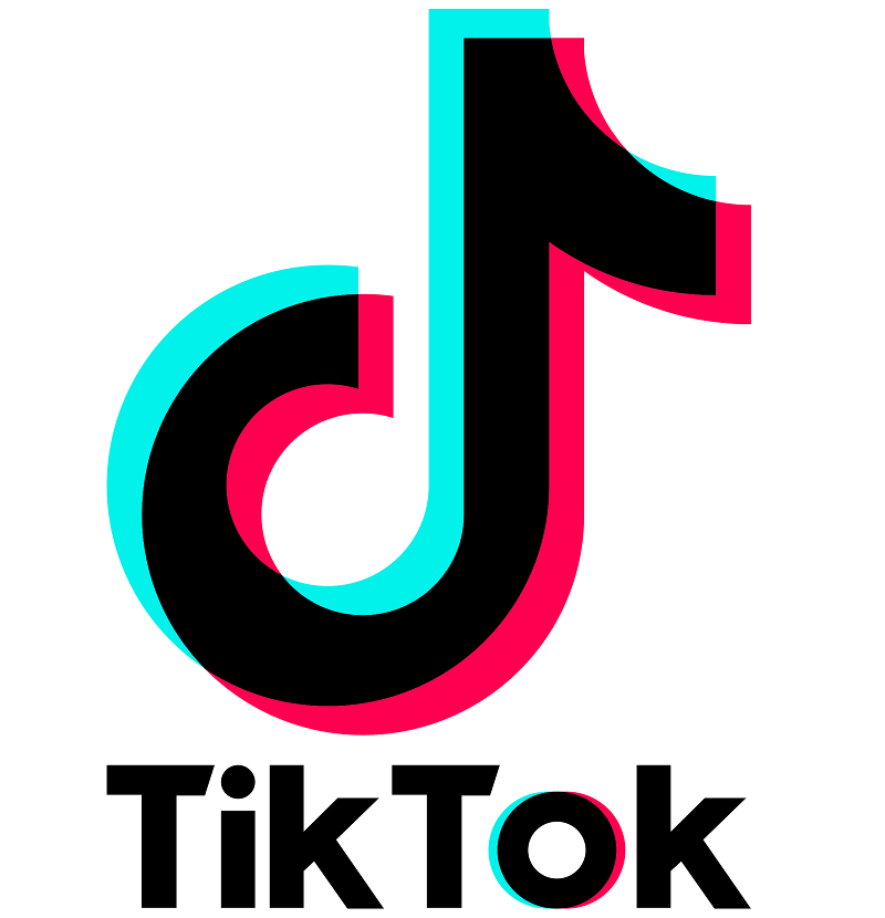 TikTok history is not old, it was started in early September 2016